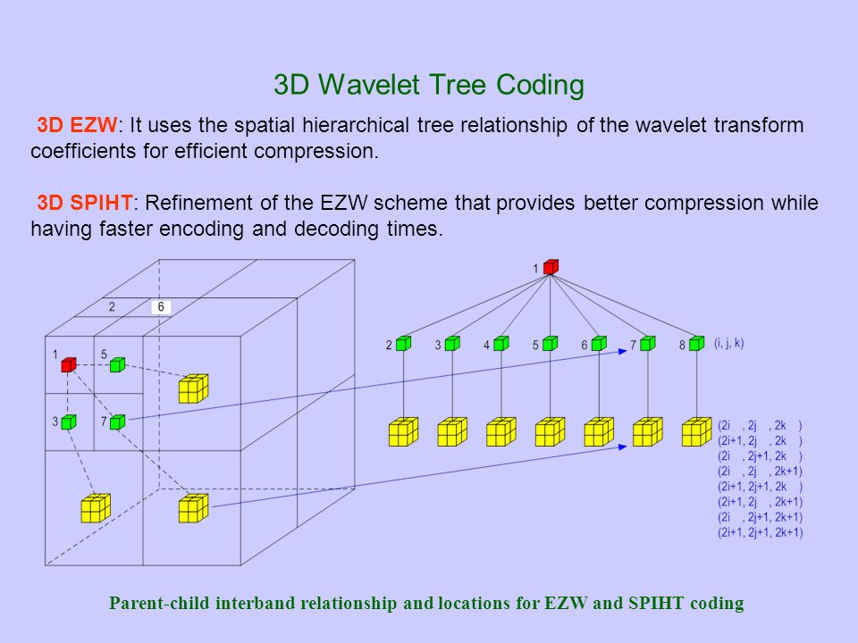 3D Wavelet Tree Coding 3D EZW: It uses the spatial hierarchical tree relationship of the wavelet transform coefficients for efficient compression.
