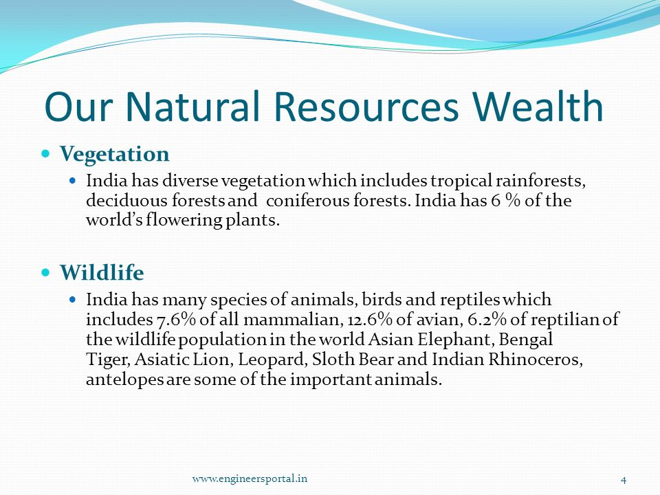 Our Natural Resources Wealth