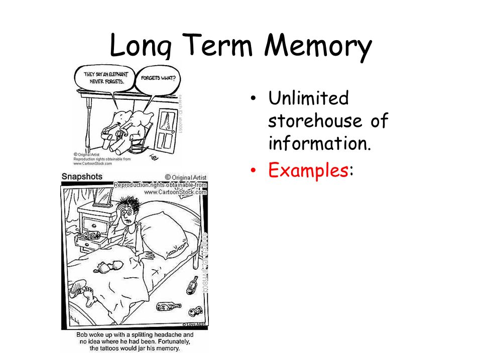 Memory Memory The Persistence Of Learning Over Time Through The