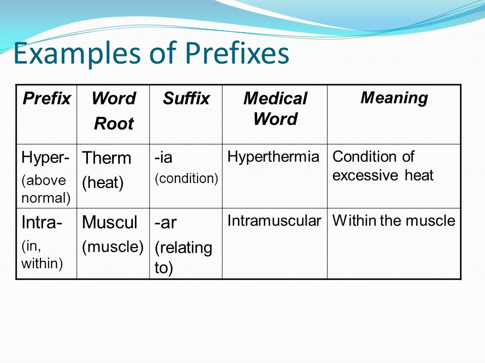 Exelent Anatomy Prefix And Suffix Pictures - Anatomy And Physiology ...