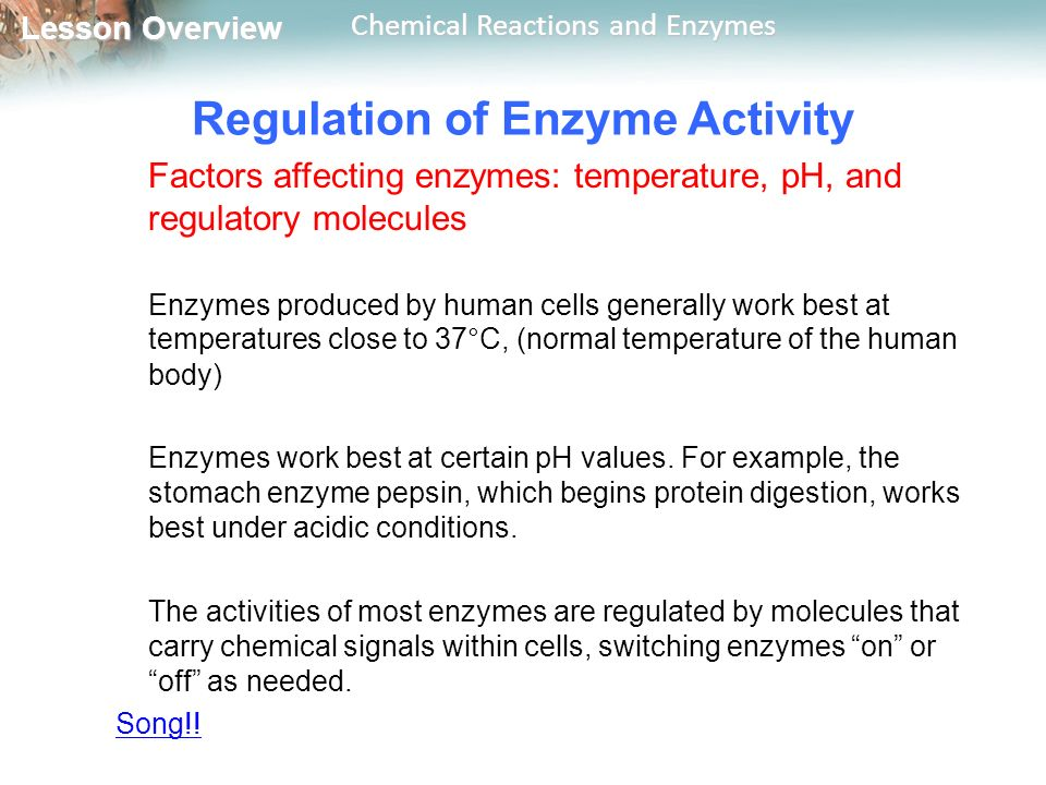 enzyme controlled reaction factors affect chemical structu Chemical reaction they catalyze—enzymes return to their original form at  form a  pocket-like structure called an active site (fig 41)  enzymes enables precise  control over the chemical  (although not all) factors that can influence enzyme.