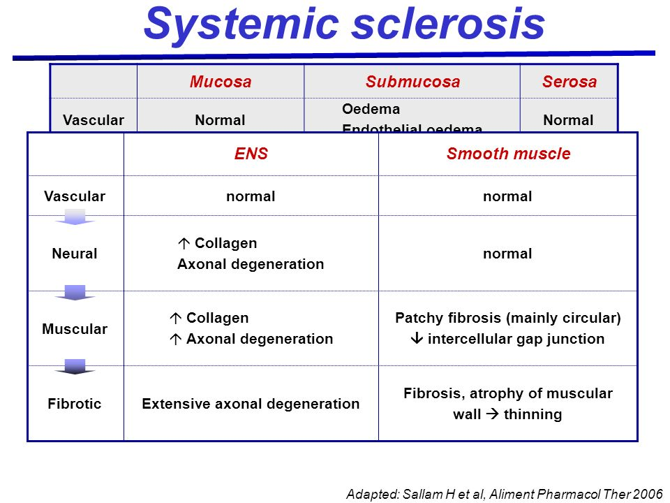 Systemic sclerosis Mucosa Submucosa Serosa Smooth muscle ENS Vascular