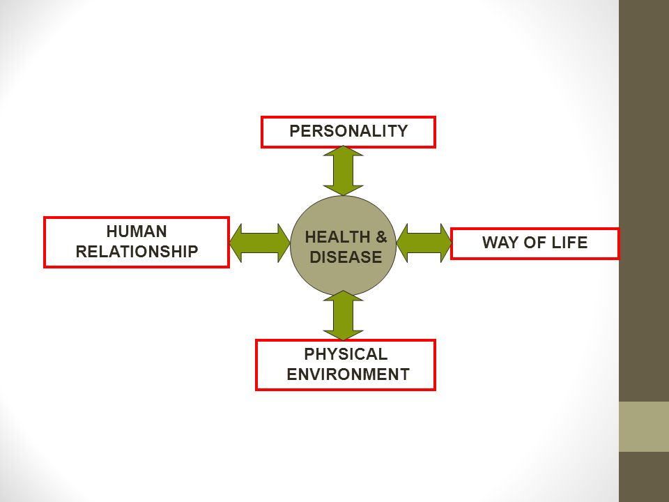 relationship of physical environment and human
