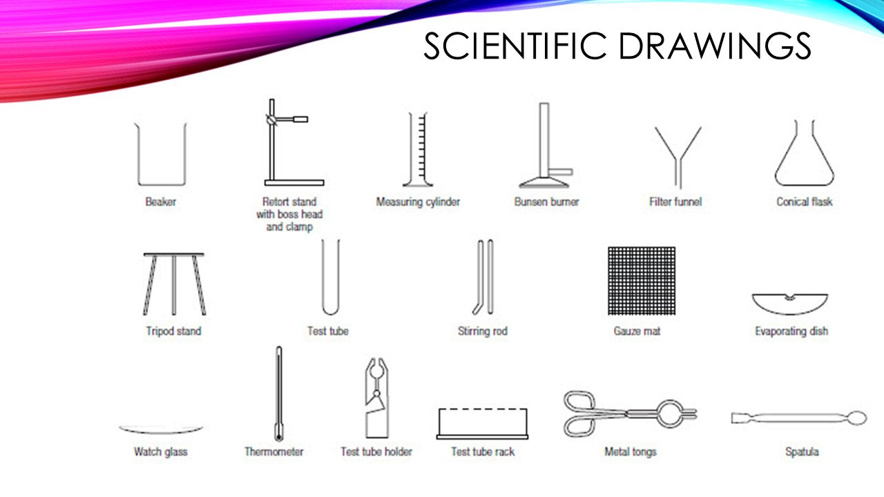 How do we explore science safely ppt video online download 8 scientific drawings pooptronica Choice Image