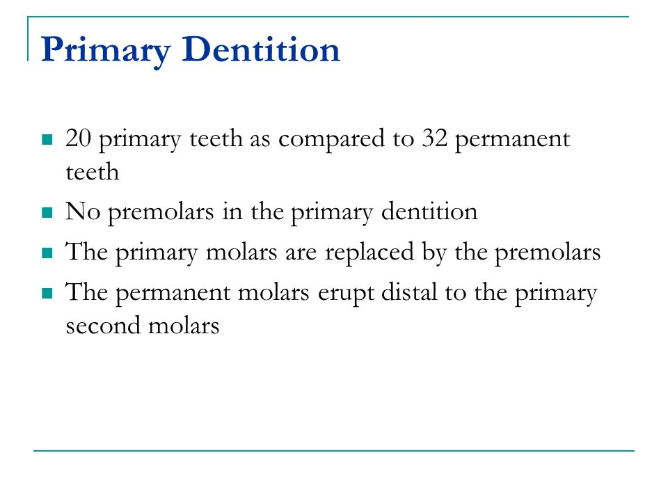 Primary Dentition 20 primary teeth as compared to 32 permanent teeth