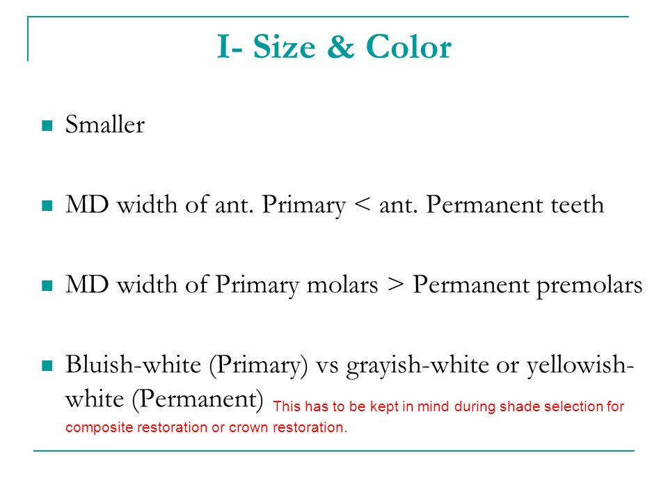 I- Size & Color Smaller. MD width of ant. Primary < ant. Permanent teeth. MD width of Primary molars > Permanent premolars.
