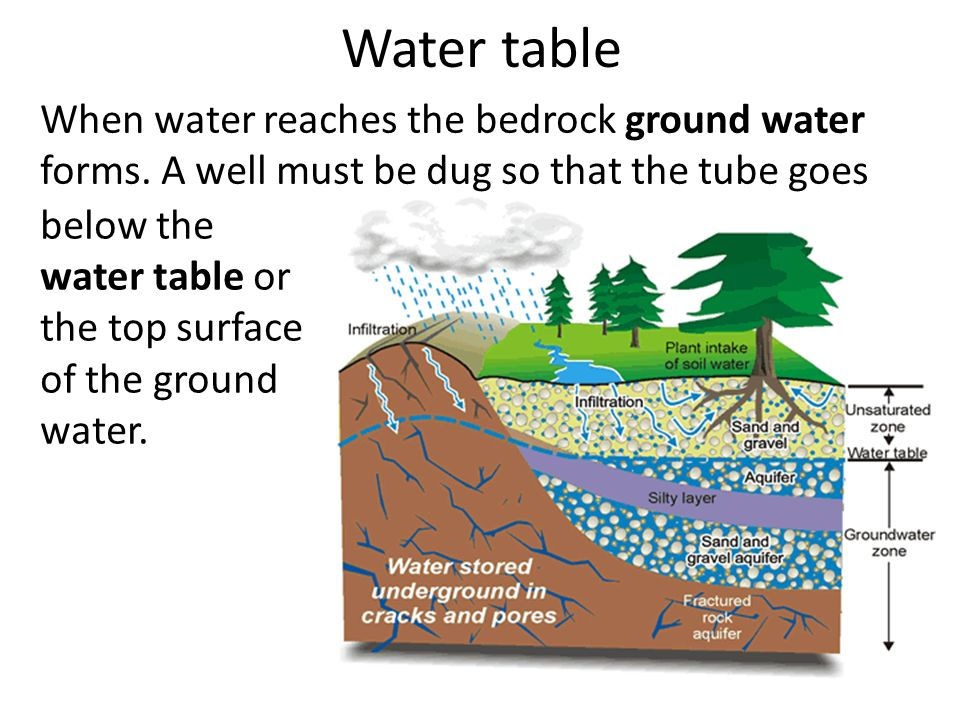 How much fertile soil does earth have ppt video online for Why the soil forms layers in water