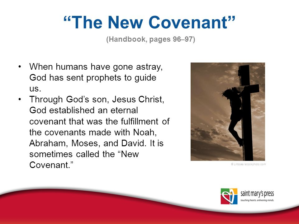 the joy of fulfilling the covenant of god God blessed noah and his sons god promised that never again will all life be cut off by the waters of a flood cursed were canaan and his descendants.