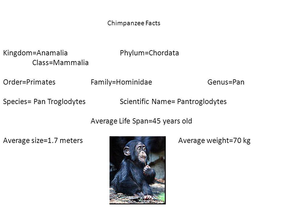 Kingdom=Anamalia Phylum=Chordata Class=Mammalia