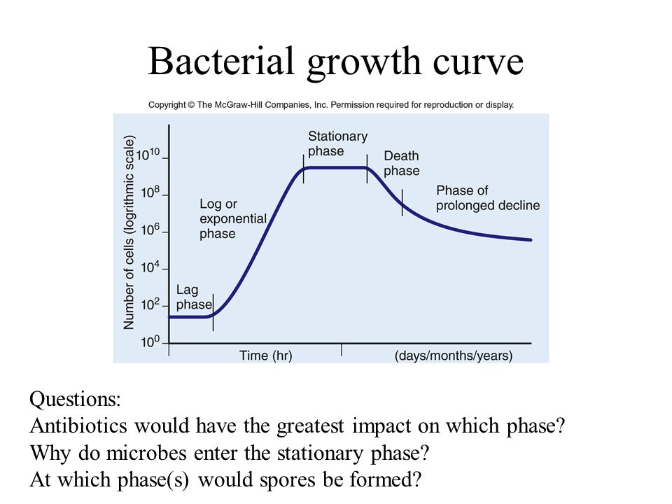 the growth of bacteria influenced by There are several factors which directly or indirectly influence the growth and development of an organism there are as follows.