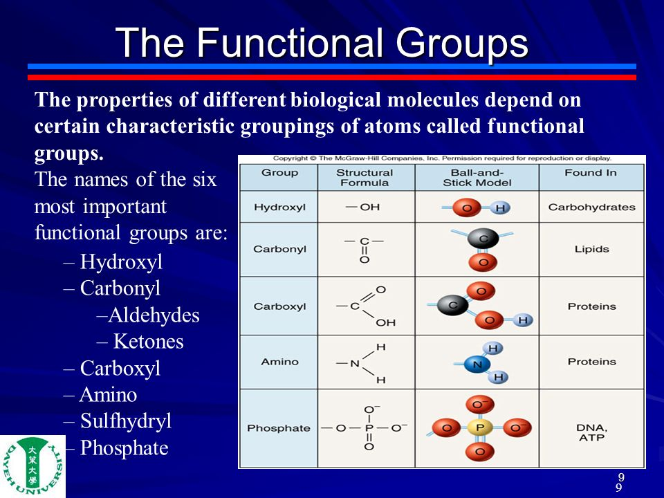 An introduction to organic and biological compounds and its importance