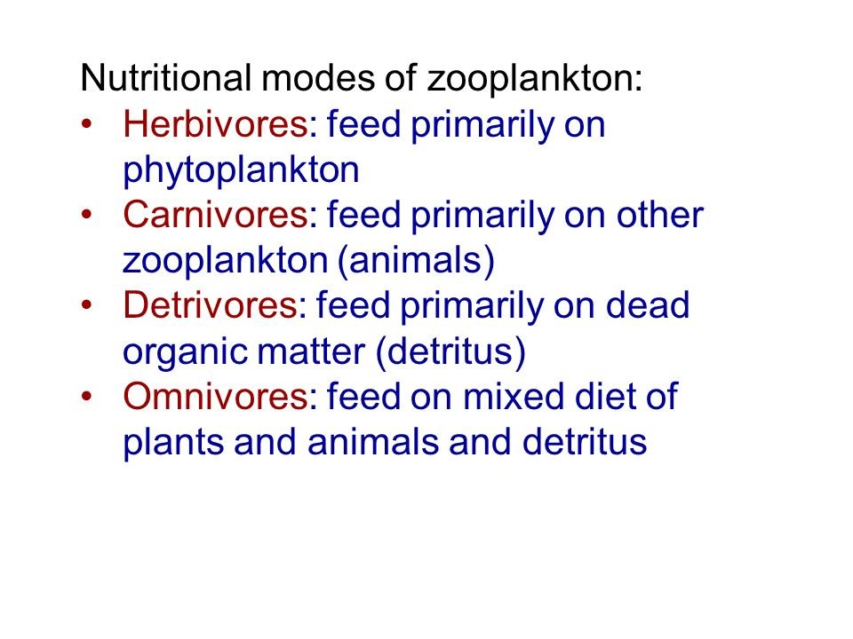Nutritional modes of zooplankton: