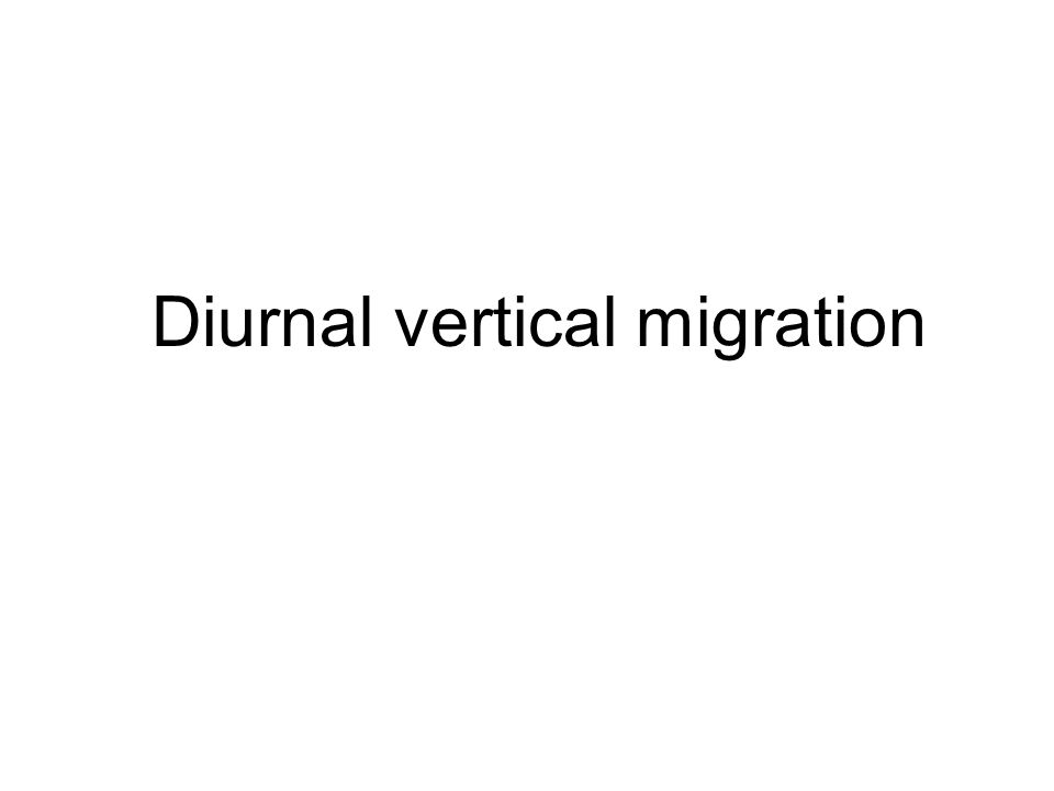 Diurnal vertical migration