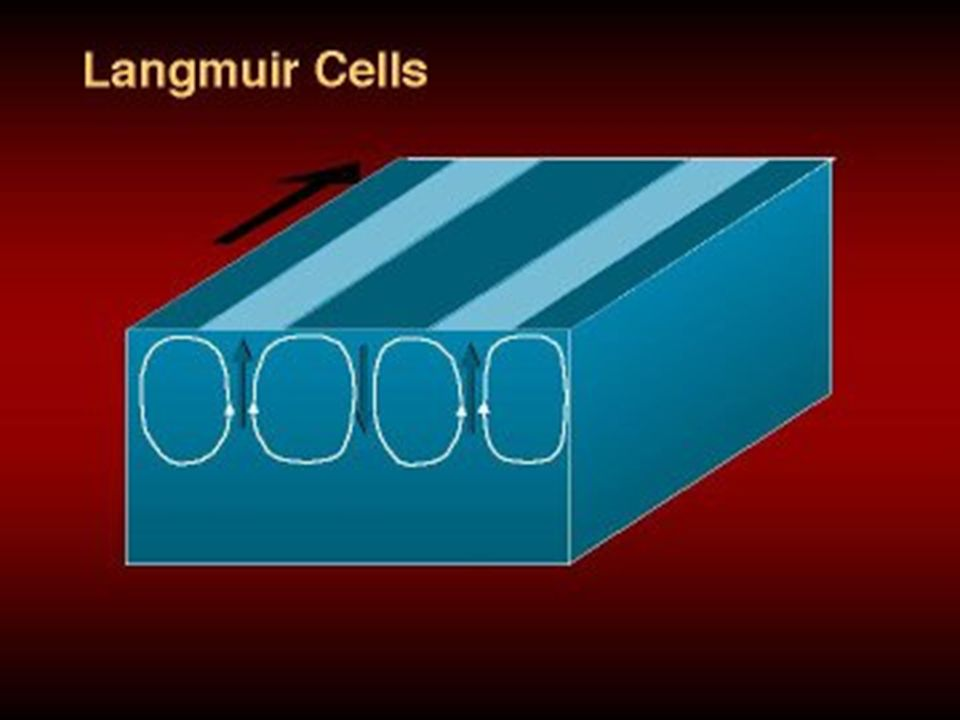Langmuir Cells At the boundary of two cells, the water will either flow upwards towards the surface or downwards.