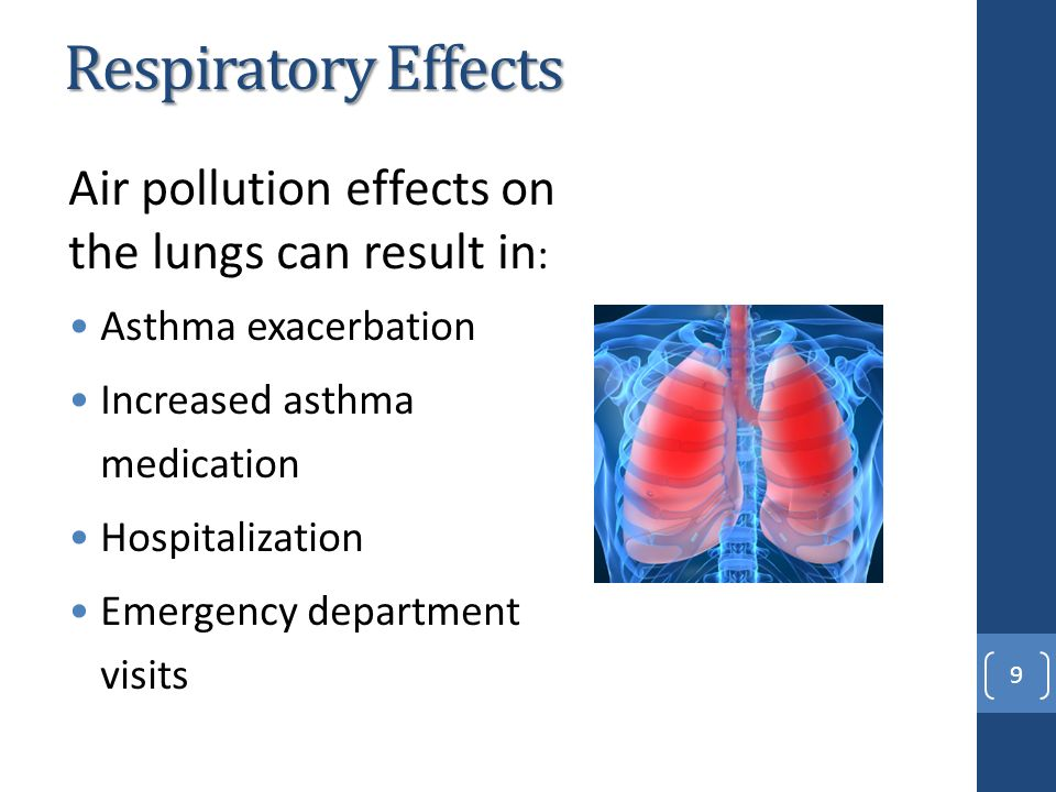 asthma a respiratory disease essay Essay on asthma at essay write we asthma is a long-term illness of respiratory tract involving despite the disease being chronic, death from asthma is rare.
