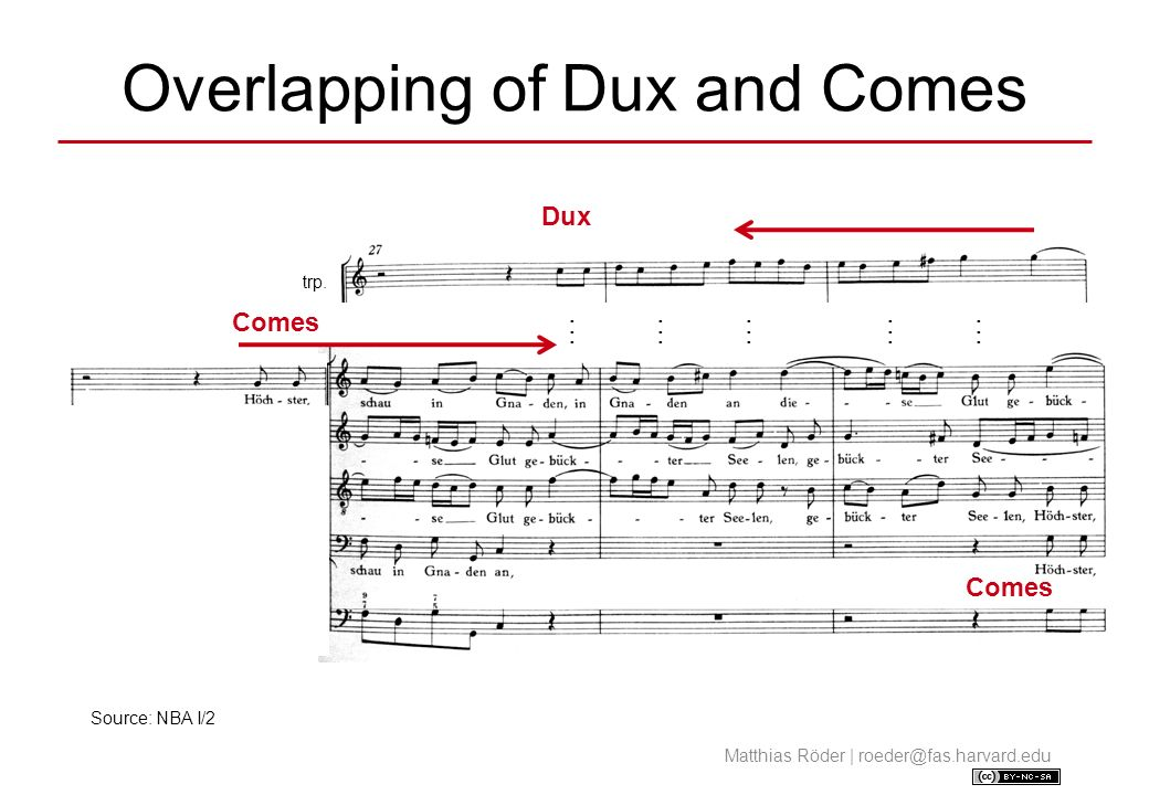 Overlapping of Dux and Comes