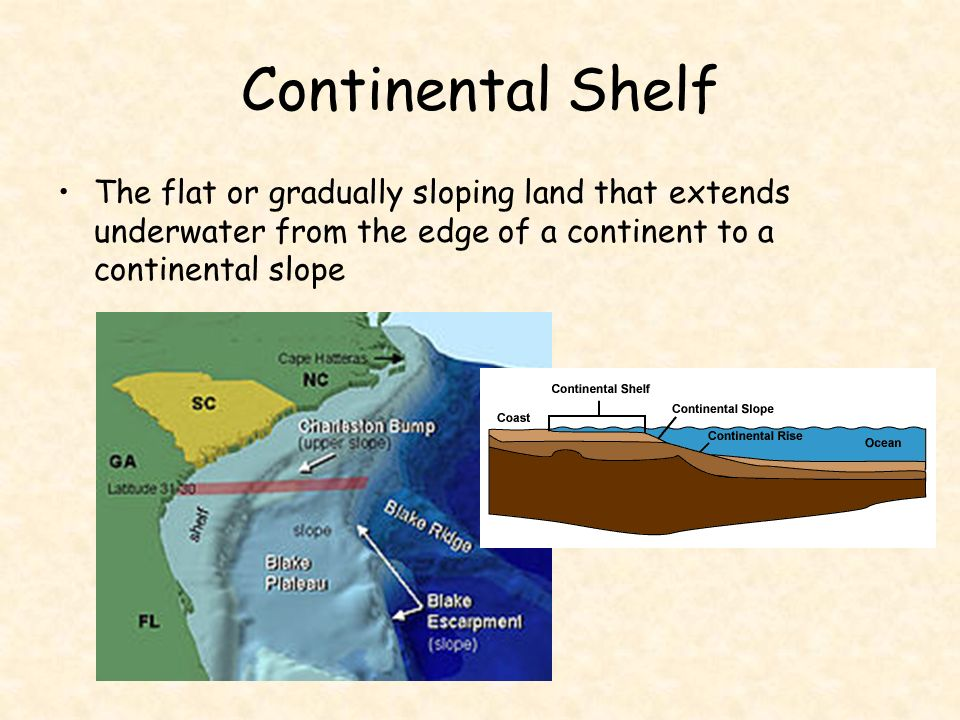 The oceans are a connected system. - ppt video online download