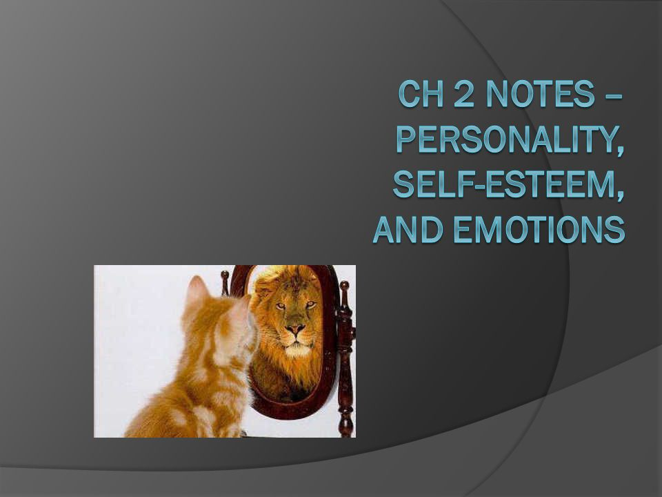 Ch 2 Notes – Personality, Self-Esteem, and Emotions