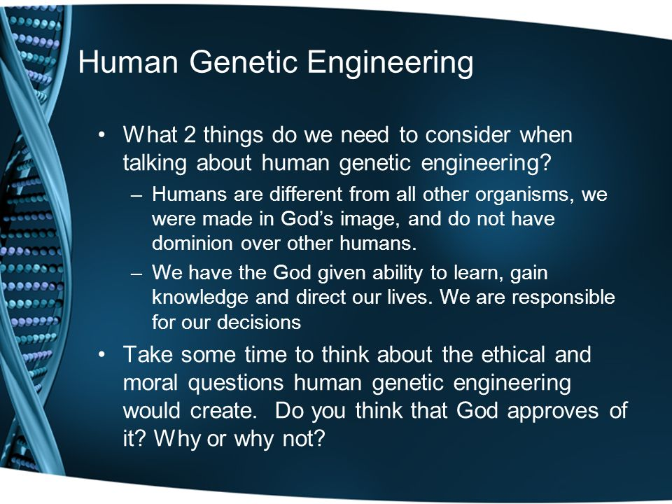 essay on genetic engineering in humans Nowadays many people are not really sure what genetic engineering is this essay sample discusses genetic engineering may result in genetic defects in humans.