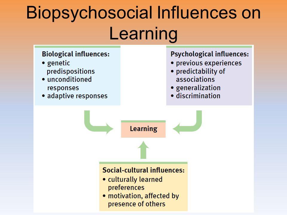 Biopsychosocial Influences Flashcards   Quizlet