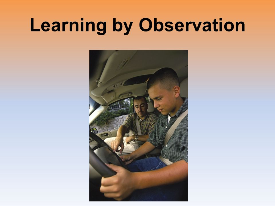 similarities between classical and operant conditioning pdf