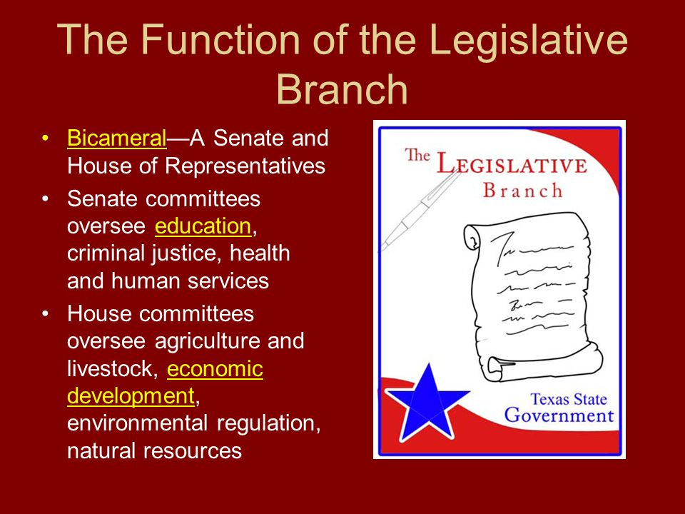 the power of legislative branch Legislative investigative powers, powers of a lawmaking body to conduct  this  power is exercised primarily to provide a check on the executive branch of.