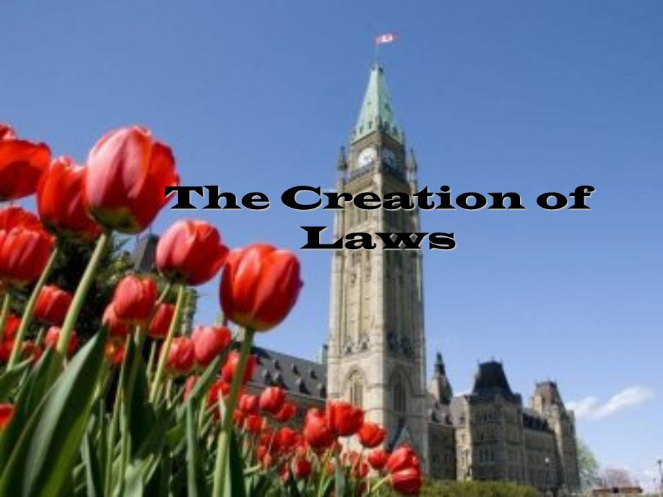 creation of laws Law is a system of rules that are created and enforced through social or governmental institutions to three key elements to the creation of a contract are.