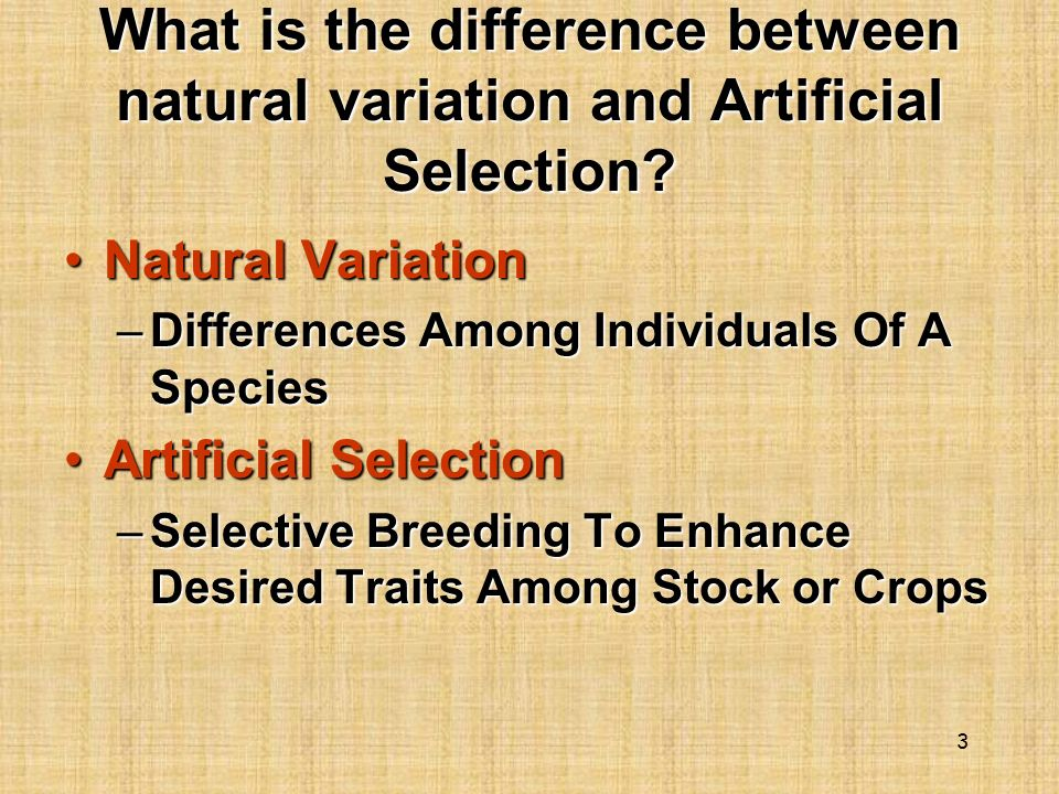 Difference Between Natural Selection And Selective Breeding
