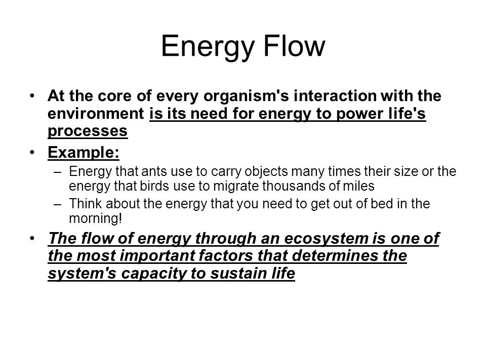 Energy Flow At the core of every organism s interaction with the environment is its need for energy to power life s processes.