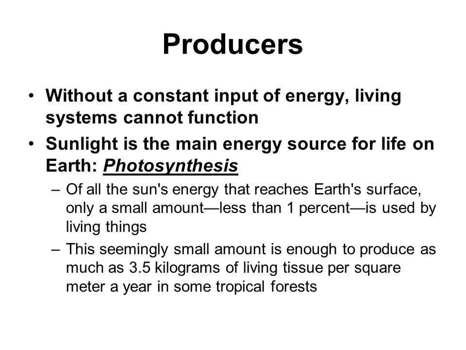 Producers Without a constant input of energy, living systems cannot function. Sunlight is the main energy source for life on Earth: Photosynthesis.