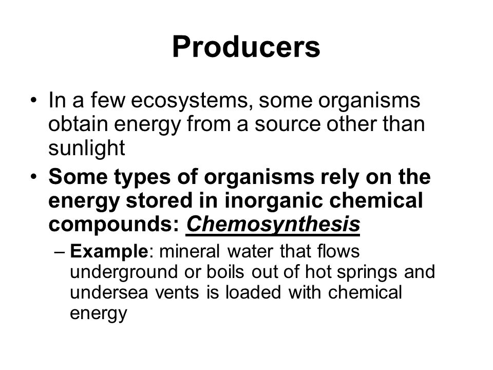 Producers In a few ecosystems, some organisms obtain energy from a source other than sunlight.