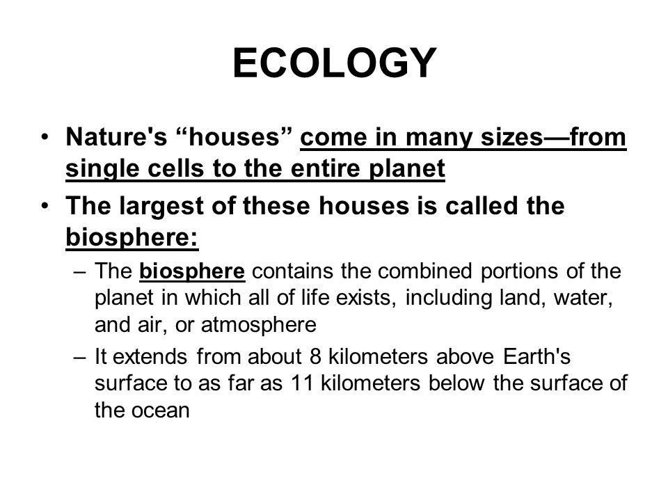 ECOLOGY Nature s houses come in many sizes—from single cells to the entire planet. The largest of these houses is called the biosphere: