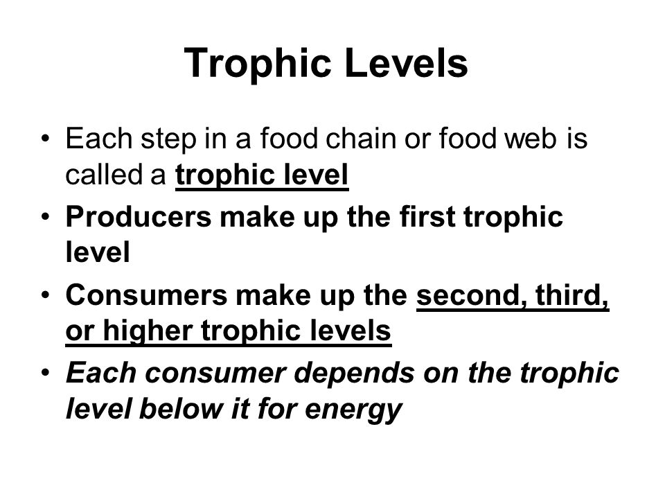 Trophic Levels Each step in a food chain or food web is called a trophic level. Producers make up the first trophic level.