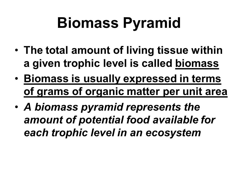 Biomass Pyramid The total amount of living tissue within a given trophic level is called biomass.