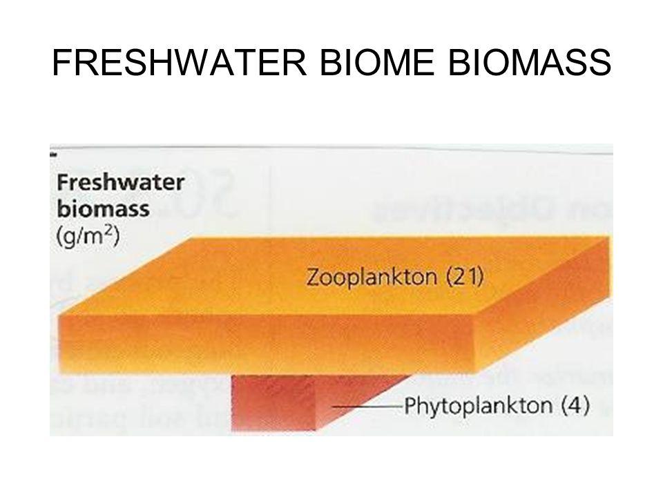 FRESHWATER BIOME BIOMASS