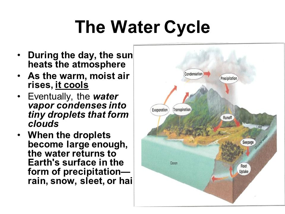 The Water Cycle During the day, the sun heats the atmosphere
