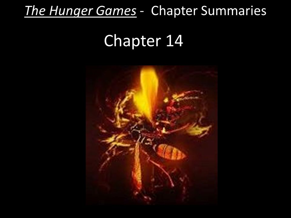 hunger games summery The hunger games chapters 1 - 3 summary - the hunger games by suzanne collins chapters 1 - 3 summary and analysis.