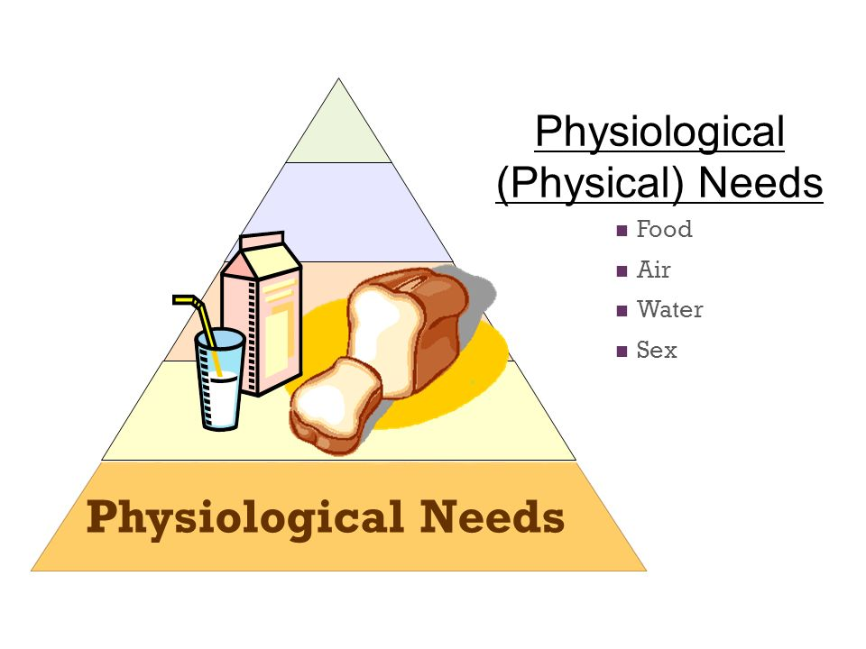 Physiological (Physical) Needs