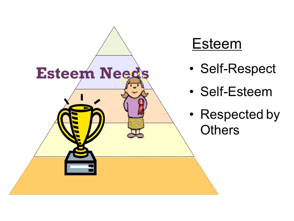 Esteem Self-Respect Self-Esteem Respected by Others Esteem Needs