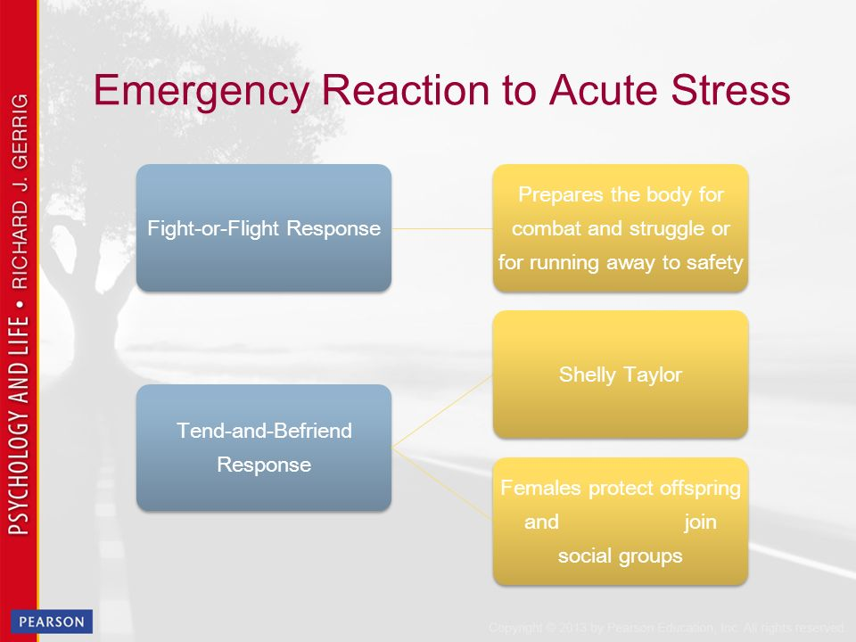 acute stress response essay Abbreviations used in this paper: had, hospital anxiety and depres- sion ibs,  irritable bowel  the acute emotional response to stress during each study was.