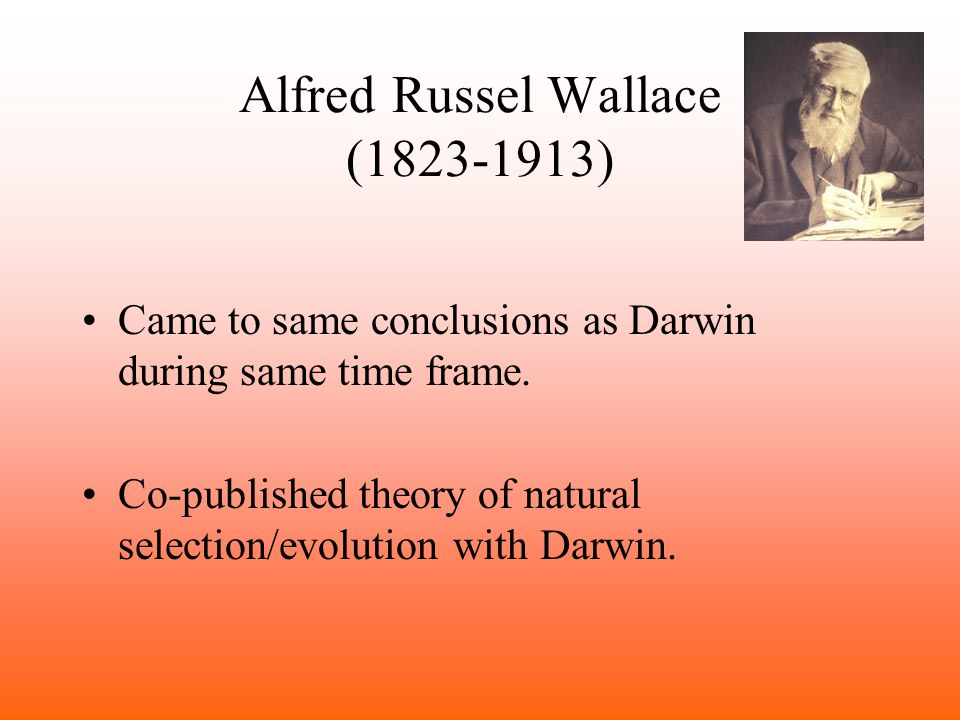 an introduction to the theories of evolution by charles darwin and alfred wallace The authors are charles darwin and alfred russel wallace  darwin had been  working on his theory since 1837, soon after his epic voyage on the hms beagle   of people darwin had shown early drafts of his own work on natural selection   lyell and hooker's own letter of introduction2 explaining the.