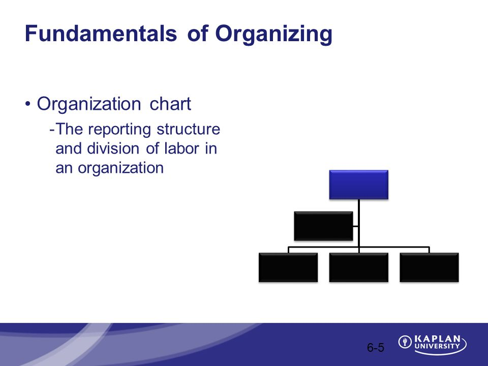 different fundamental of organizing chart: Introduction to management ppt video online download