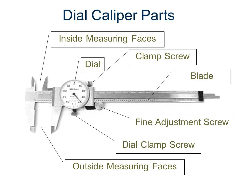 dial caliper worksheet resultinfos. Black Bedroom Furniture Sets. Home Design Ideas