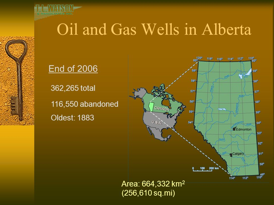 how to start a numbered company in alberta
