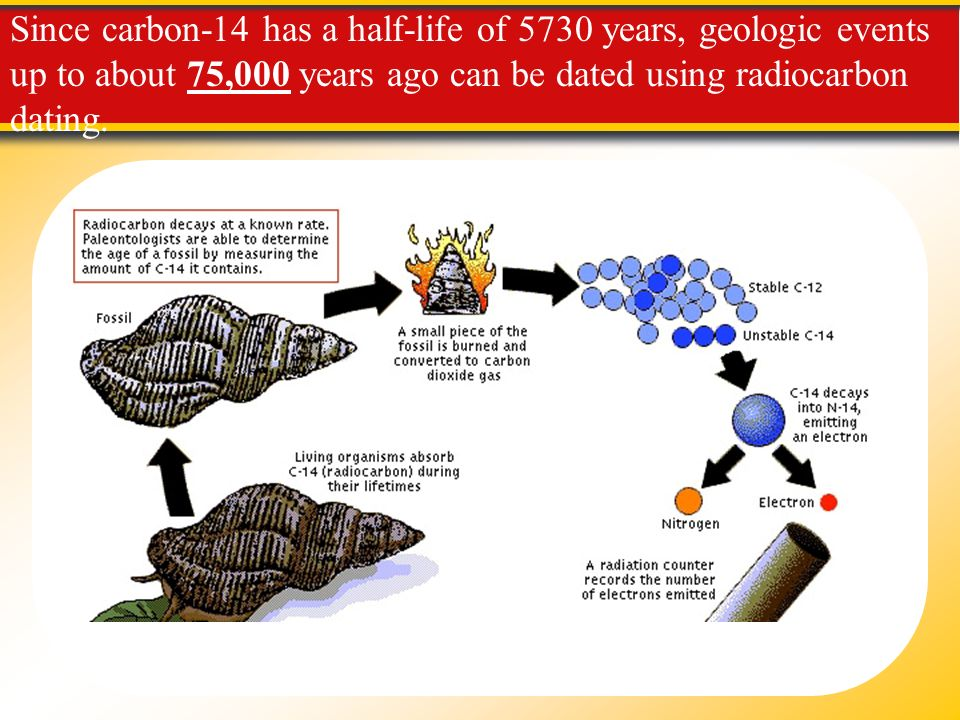 Carbon Dating Gets a Reset - Scientific American