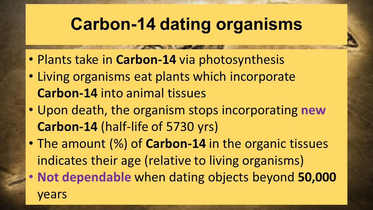 half life in carbon dating Carbon dating is a real-life example of a first-order reaction this video explains half-life in the context of radioactive decay watch the next lesson: htt.