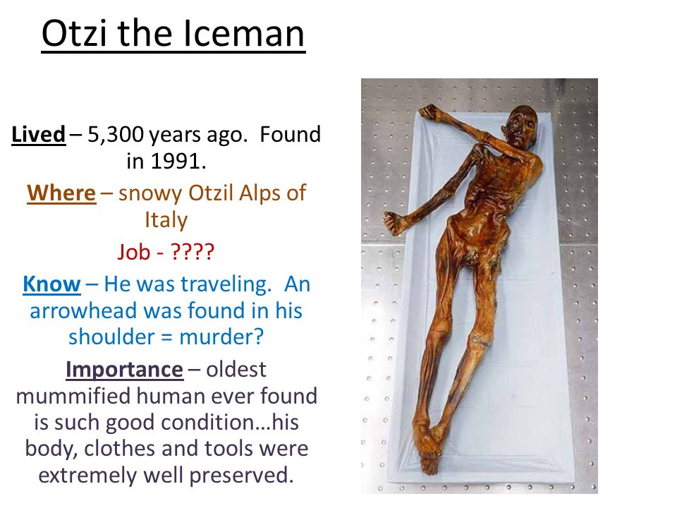 a paper on otzi the iceman Otzi, also called otzi the iceman, is a well-preserved natural mummy of a man he is europe's oldest known natural human mummy, and has offered an unprecedented view of chalcolithic europeans he is europe's oldest known natural human mummy, and has offered an unprecedented view of chalcolithic europeans.