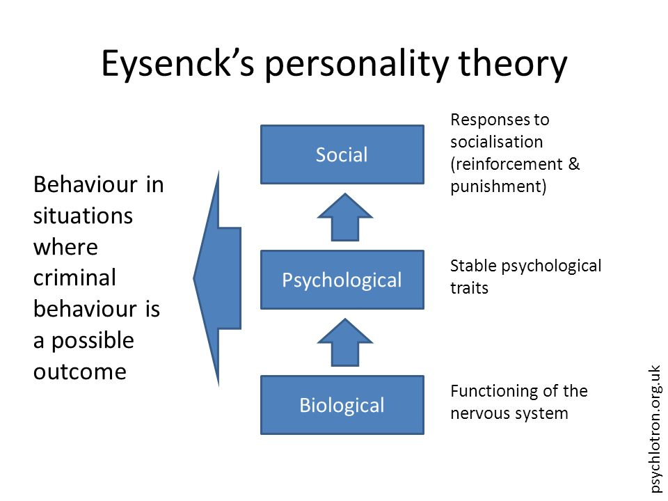 evaluation of eysencks trait theory of personality A summary of biological approaches in 's personality  these genetic influences on personality hans eysenck's theory  to eysenck, personality traits are .