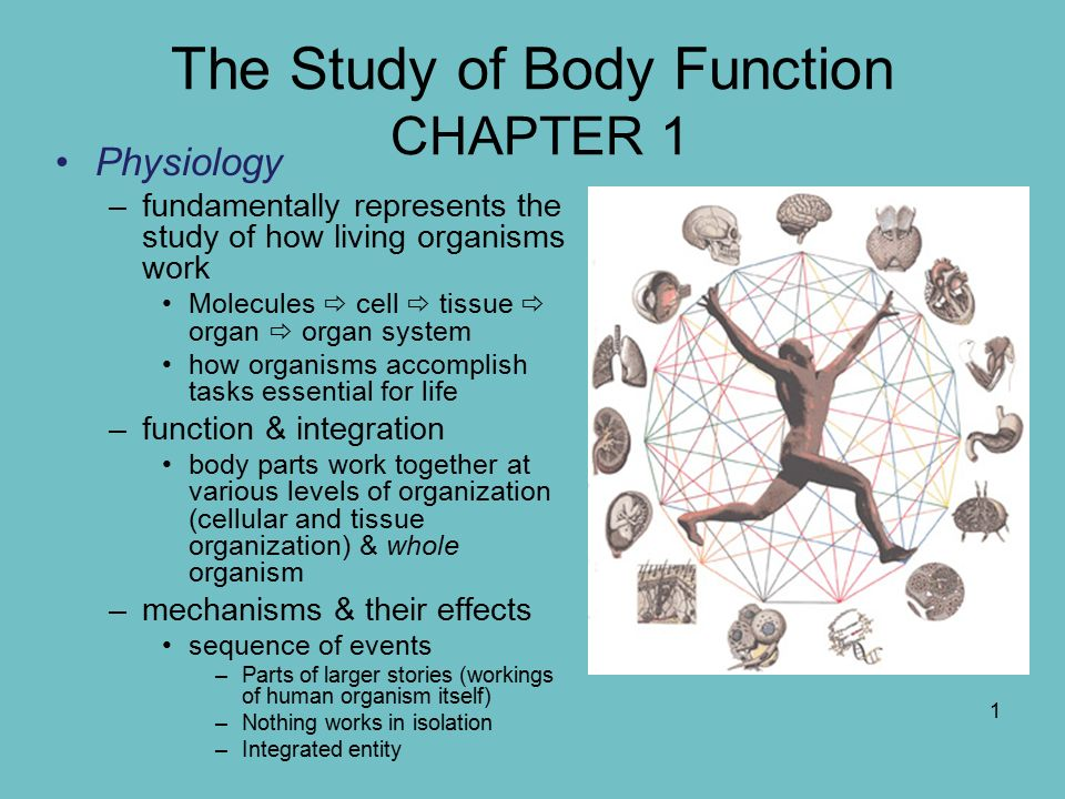 The Study Of Body Function Chapter 1 Ppt Video Online Download