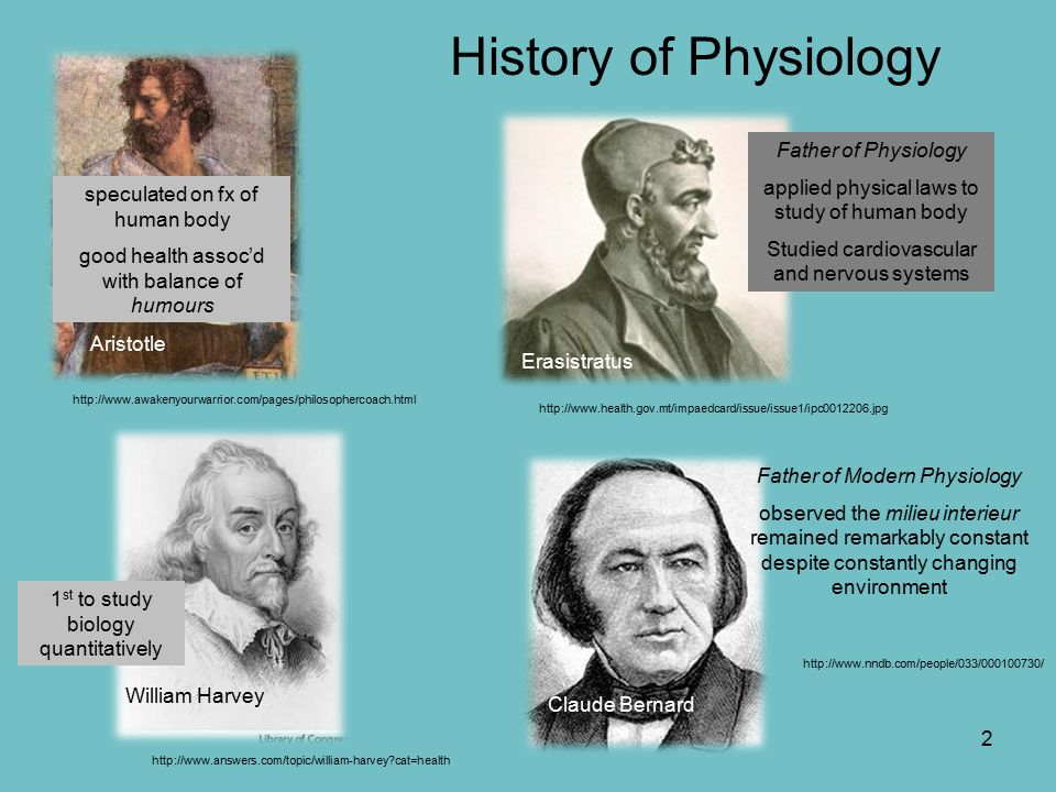 an analysis of studying physiology throughout history We here discuss several methods for studying the ecological physiology of  easily processed foods throughout a  to studying the physiology and ecology of .